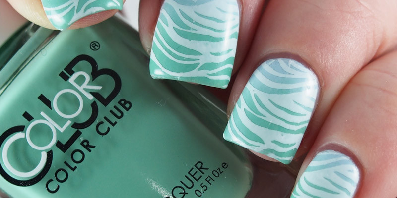 Stamped Color Club Gradient